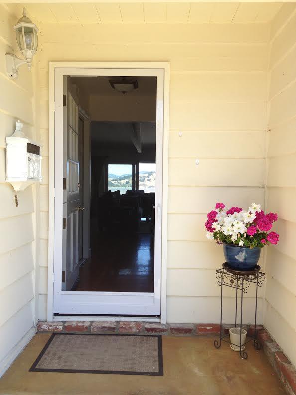 Swinging Screen Door: Vista